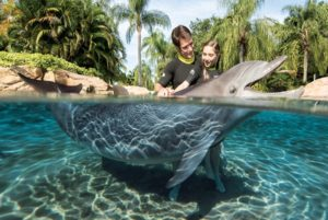 Parque Discovery Cove