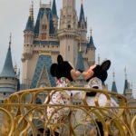 Altura Mínima nas Atrações da Disney