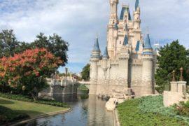 Reforma no Castelo da Cinderela