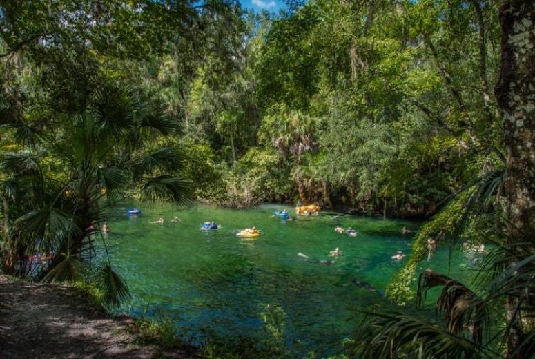 Springs Perto de Orlando- Blue Spring State Park-min