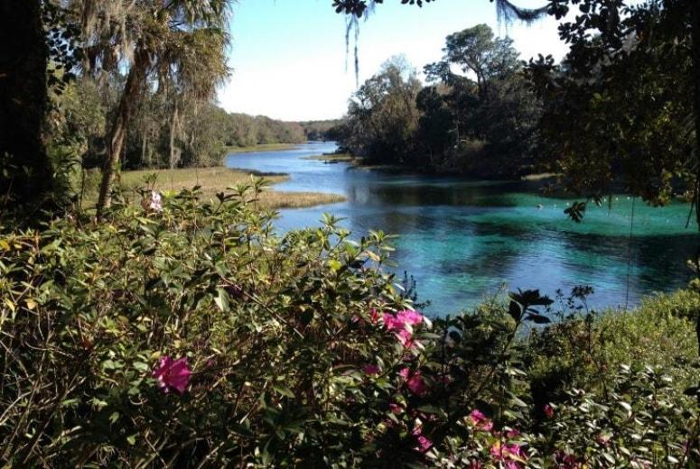Springs Perto de Orlando - Rainbow Springs State Park