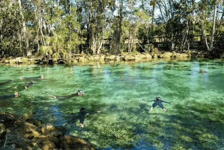 Springs próximos de Orlando - Three Sisters Springs