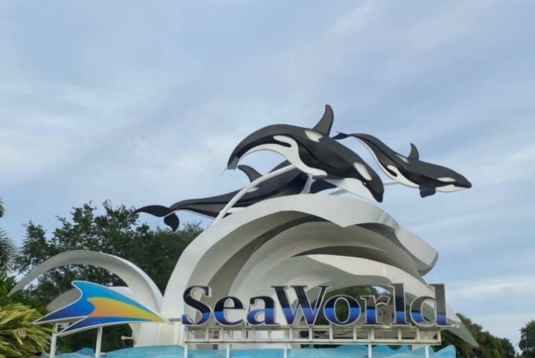 Sea World Orlando Anuncia Plano e Data de Reabertura